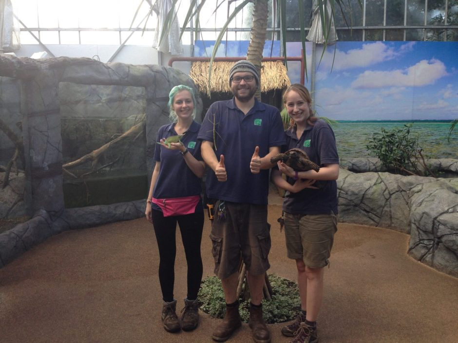The Zoological Curator leads the animal team