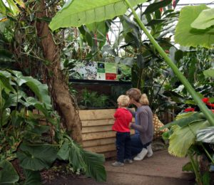 A mother and child enjoy looking at the plants and animals at the Living Rainforest