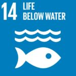 Life Below water SDG