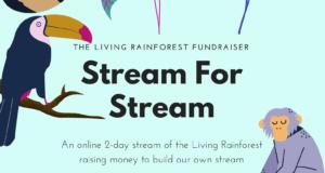 Stream For Stream Poster 2